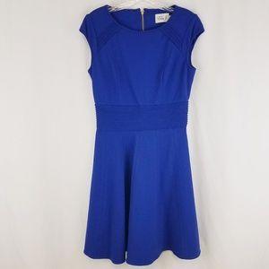 Eliza j blue skater dress 8